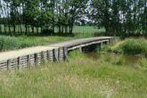 Romeinse brug Tungelroy